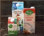 Học cách làm chậu nhỏ trồng cây ngộ nghĩnh từ hộp sữa tươi
