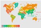 Nước nào có nhiều người béo phì nhất thế giới?
