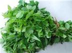 3 tác hại không ngờ của rau ngót mà người ăn cần cẩn trọng