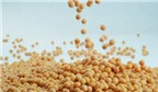 Hạn chế viêm nhiễm bằng thực phẩm