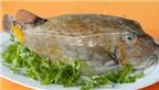 Những món cá dành cho thực khách sành ăn