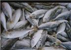 Cách sơ chế hải sản chuẩn và ngon