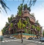 Mê mẩn kiến trúc nhà cây độc đáo