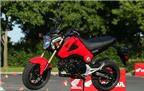 Honda MSX độ phong cách Scrambler