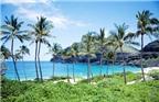 Thiên đường du lịch biển Đồ Sơn