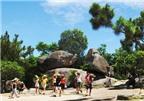 Du lịch biển Sầm Sơn nên đi những đâu?