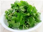 Cách nấu những món canh rau má giải nhiệt
