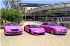 Lamborghini, Bentley hồng chóe chống ung thư vú