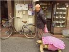 """Kỳ lạ """"mốt"""" dẫn rùa đi dạo ở Nhật"""