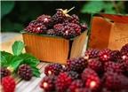 6 siêu thực phẩm giúp ngừa ung thư, đột quỵ