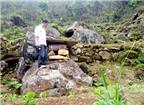 Độc đáo nuôi ong hốc đá ở Ngàn Chuồng