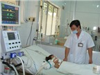 Các bài thuốc hỗ trợ điều trị sốt xuất huyết