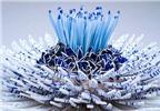 Bông hoa tuyệt đẹp làm từ 1.000 mảnh sứ