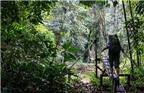 Hang Nai: Bài học du lịch xanh từ Malaysia