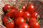 Chuyên gia tiết lộ 10 thực phẩm tốt nhất cho tinh trùng