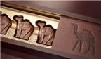 Siêu ngọt ngào sô-cô-la sữa lạc đà khi đi du lịch Dubai