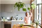 6 lời khuyên trồng rau trong bếp