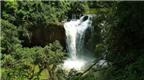 Du lịch sinh thái tại xứ sở Chùa Vàng