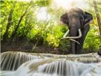 8 điểm đến đẹp mê hồn ở Thái Lan