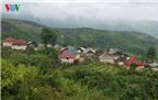 Độc đáo nhà mái cỏ trên núi Kin Chu Phìn