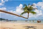 Top 8 hòn đảo tuyệt đẹp chưa bao giờ hết 'hot' của du lịch Thái Lan
