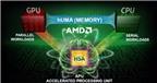 AMD cân nhắc khả năng chia nhỏ, tách mảng