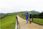 Vợ chồng Lâm Chí Dĩnh lãng mạn dạo bước bên nhau