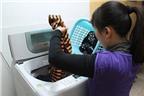 Cách tiết kiệm điện ít biết khi dùng máy giặt