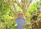 Nhờ trồng dâu kết hợp du lịch sinh thái mà thành tỷ phú