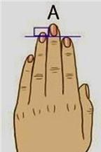 Đoán tính tốt - xấu qua độ dài ngón tay