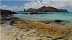 10 hòn đảo du lịch tốt nhất thế giới