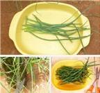 Cách trồng hành tím trong chai để ăn lá tại nhà