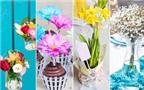 Gợi ý 4 cách cắm hoa sáng tạo đẹp mắt