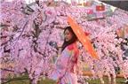 Chụp ảnh cưới theo phong cách Nhật Bản