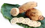 4 món canh chay dưỡng sinh dành cho người bị tiểu đường