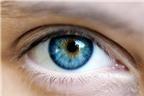 15 thực phẩm tốt cho đôi mắt