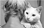 Người nuôi mèo dễ có nguy cơ mắc bệnh tâm thần