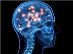 Thành công trong việc tạo ra não người nhân tạo