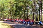 Lễ hội phượt Đà Lạt - Những cung đường xanh