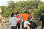 Dạy kỹ năng sống cho trẻ tự kỷ, khuyết tật qua việc học cưỡi ngựa: Cách hay rèn thể chất và tinh thần