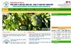 IPO thành công Vegetexco Vietnam