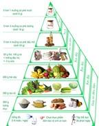Kiểm soát chế độ ăn bằng tháp dinh dưỡng