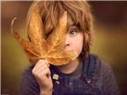 Chùm ảnh tuyệt đẹp em bé với mùa thu vàng