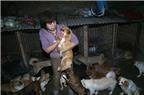 Người phụ nữ dành toàn bộ tài sản để chăm sóc cho 140 chú chó