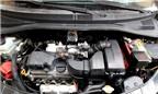 Kinh nghiệm ngăn chuột phá ô tô của bạn