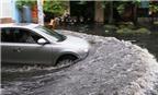 Mẹo di chuyển an toàn khi ngập lụt, tránh thủy kích