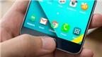 Mẹo tận dụng tối đa camera Samsung Galaxy Note 5