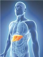 Tầm soát và điều trị viêm gan siêu vi C
