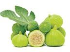 Ngừa bệnh nhờ trái vả
