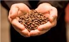 4 tác dụng làm đẹp kỳ diệu từ cà phê